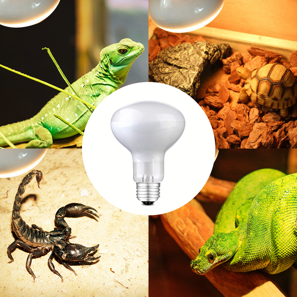 Reptile Light B Ulb Uv Heat Lamp Lizard Calcium Supplement Uvb Uva 220v Ebay