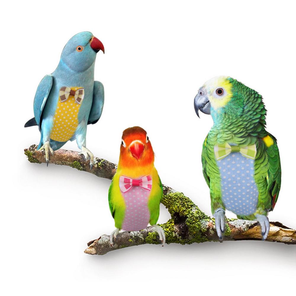 Details about Bird Cute Clothes Nappy Parrot Diaper Decor Pet Pilot  Clothing MUlit Color S/ M
