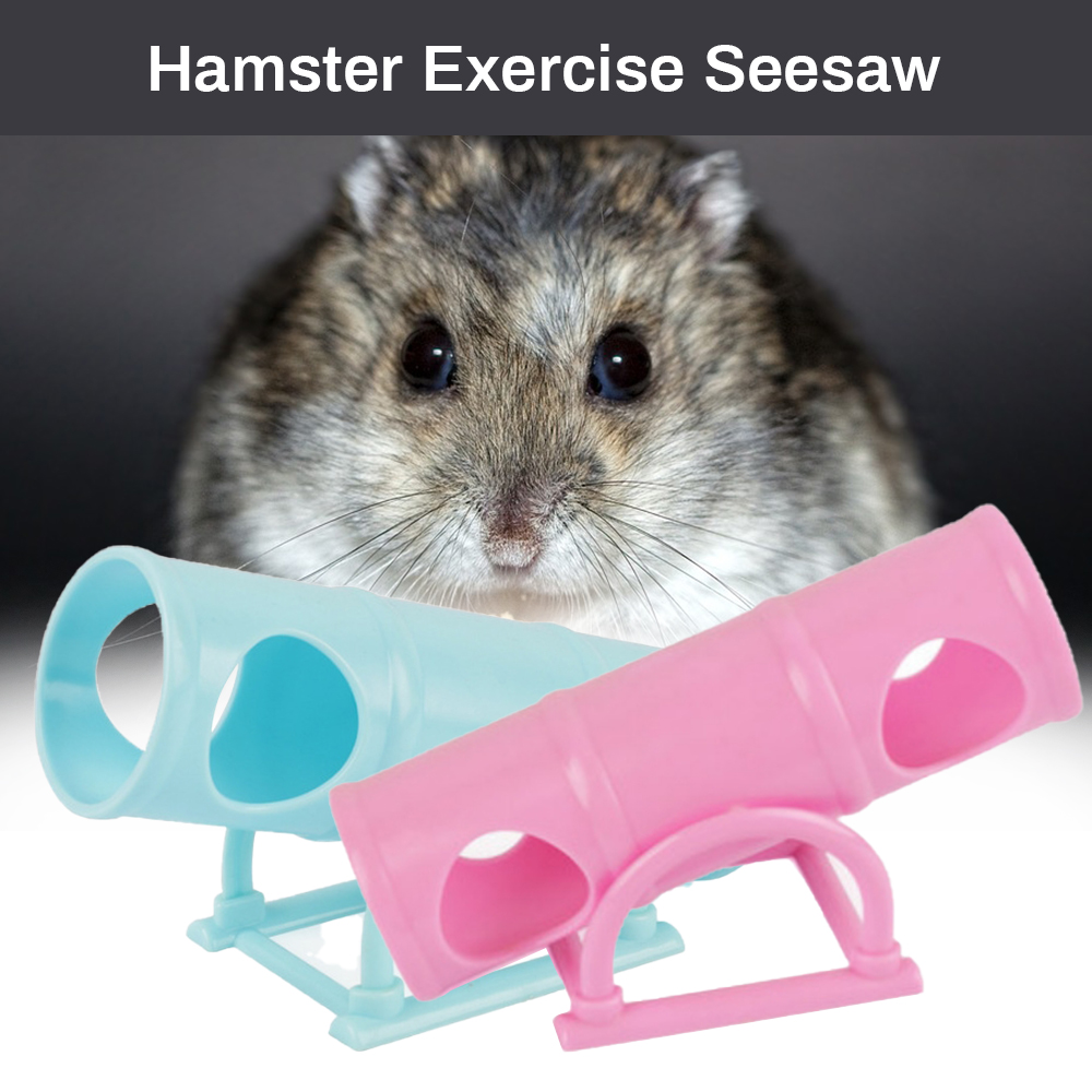 Hamster Seesaw Tunnel Tube House Training Playing Exercise Toy ...