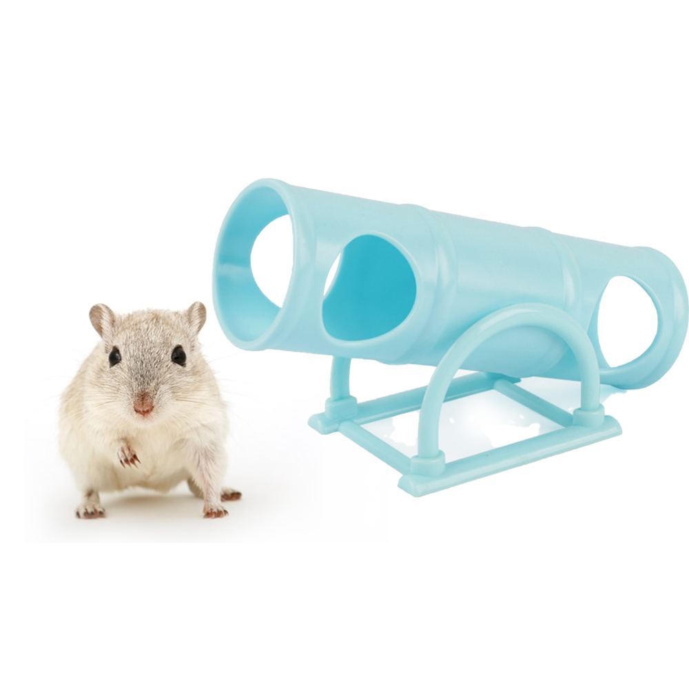 Hamster Seesaw Tunnel Tube House Training Play Exercise Toy For ...